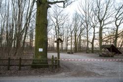 Zamknięto parki i lasy. Nawet władza nie wie do dzisiaj, dlaczego?