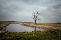 """Rzeka Wissa, o której pisał prof. Bohdan Winiarski w swojej książce wspomnieniowej """"Nad Pisą, Wissą i Narwią""""."""
