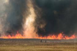 Goniądz, pożar Biebrzańskiego Parku Narodowego. Idzie ściana ognia. Strażacy polewają trawę, aby zatrzymać żywioł.