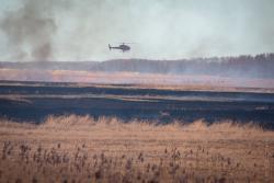Wroceń, pożar Biebrzańskiego Parku Narodowego. Śmigłowiec gasi pożar traw, a zdezorientowana sarenka chodzi po pogorzelisku, czasem przemykając pomiędzy paląca się trawą.