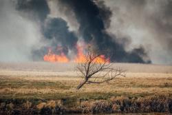 Wroceń, pożar Biebrzańskiego Parku Narodowego.