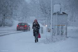 Intensywne opady śniegu paraliżują miasto i region.