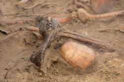 Odnaleziona mogiła pod krzyżem na trasie Łomża - Nowogród. Mogą to być żołnierze carscy z okresu pierwszej wojny światowej, albo Polscy z 1939 roku. Bezład pochówku pod polnym krzyżem zamieniliśmy im na pogrzeb wojskowy w Dolinie Pamięci, tuż obok kościoła Miłosierdzia Bożego.