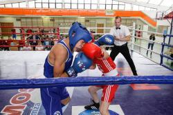 VIII Indywidualne Mistrzostwa Polski Młodzików w boksie olimpijskim odbyły się w hali Olimpijczyków Polskich. Takiej chęci walki, ambicji i zawziętości momentami próżno było szukać na tzw. zawodowej gali boksu.