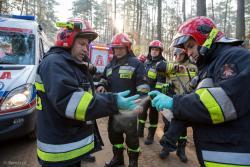 Strażacy z PSP w Łomży dezynfekują ręce po akcji ratunkowej.