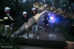 Okolice Szczepankowa, Powiat Łomżyński. Nawałnica przeszła nad regionem, łamała i wyrywała drzewa, zrywała dachy i linie energetyczne n/z strażacy z OSP Szczepankowo udrażniają drogę.