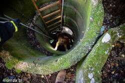 Pies w studni w Giełczynie. Świetna praca strażaków.