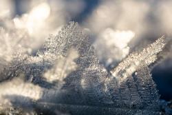 Ulotna makro lodowa kryształowa kraina w dopływie Narwi. Podziwiać ją można na kolanach w świetle zachodzącego słońca.