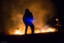Strażak gasi pożar trawy na fortach w Piątnicy.