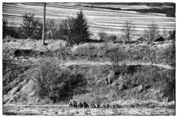 Żołnierze WOT z zwartej kolumnie biegną w Biegu Pamięci Żołnierzy Wykletych w Piątnicy.